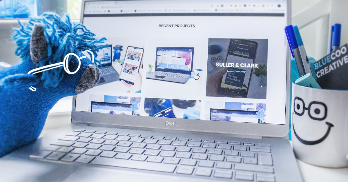 BlueCoo Website Design Perth Portfolio